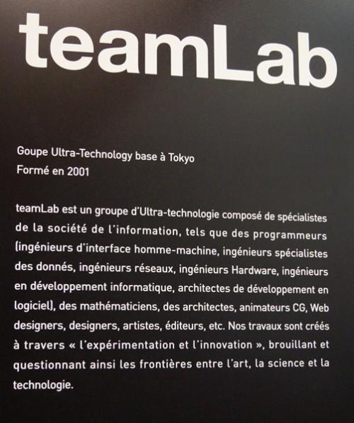team-lab-tokyo-maison-et-objets