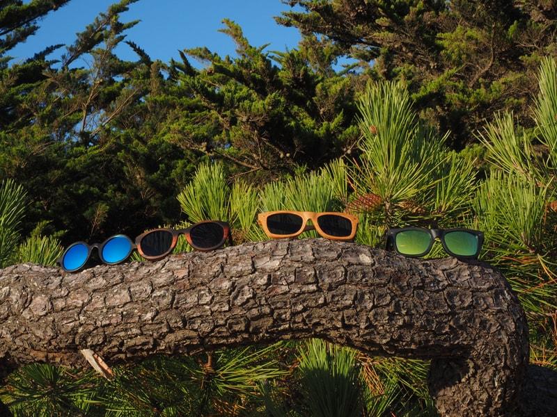 Etre du bois dont on fait les lunettes